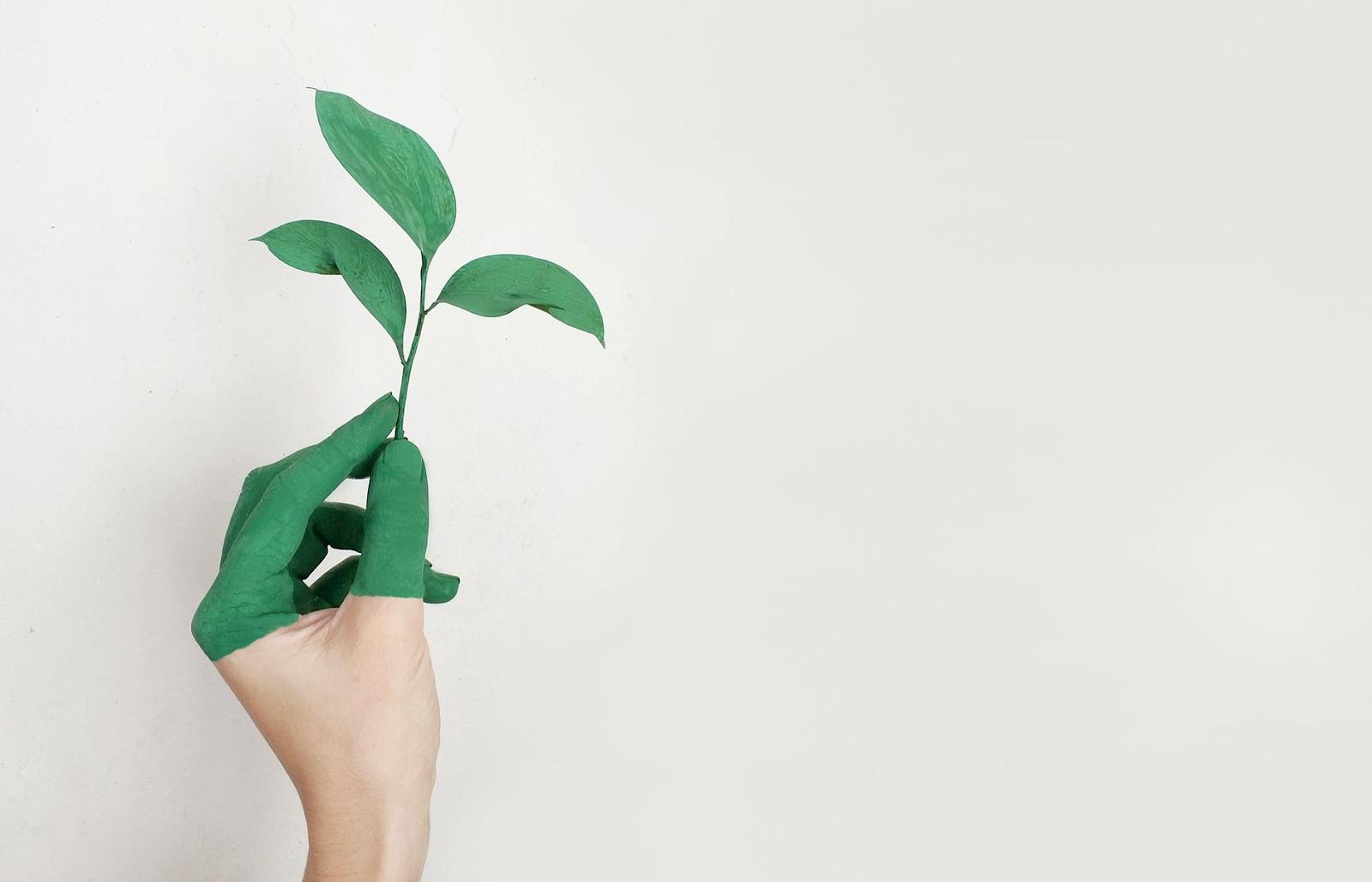 Comment réduire mon empreinte carbone